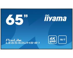 IIYAMA 65